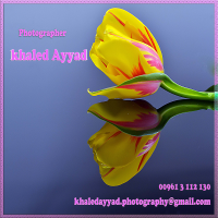 Photographer Khaled Ayyad