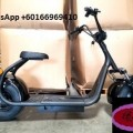 Citycoco Electric Scooter 2000W